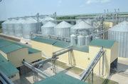 Строительство комбикормовых заводов - foto 1
