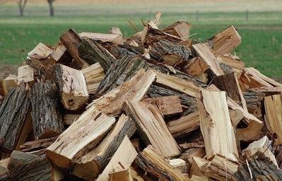 Продам дрова из акации колотые в Днепропетровске - main