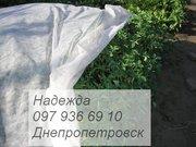 Агроволокно черное белое - foto 1