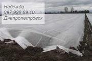 Агроволокно черное белое - foto 2