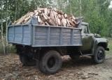 Продам дрова из акации колотые в Днепропетровске - foto 0
